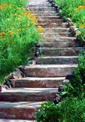 Transition: Stone steps leading upwards